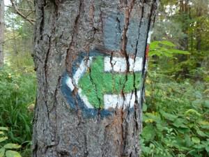 Z pod zielonej strzałki przebija żółty kolor dawnego szlaku do Cigelki.